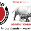 The Great White Rhino Hunting debate